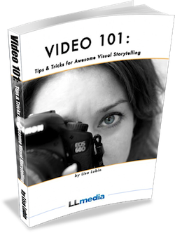 Lisa Lubin Video 101 e-book