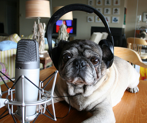 record podcasts interviewing experts content creation